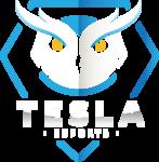 Tesla eSports